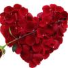 Valentine's Day Menu Recipe Round-up